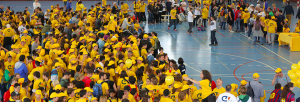 Open_Day_7