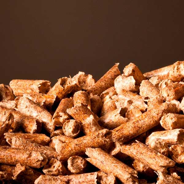 pellet biomass dfusio
