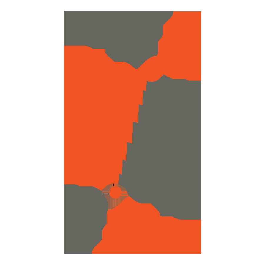 logo regenerativa dfusio